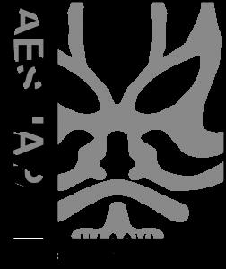 AESJC15_Logo_CS6